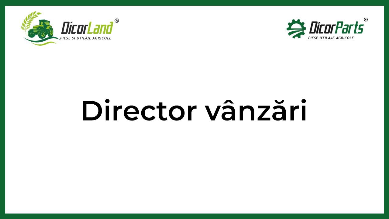 Director vanzari